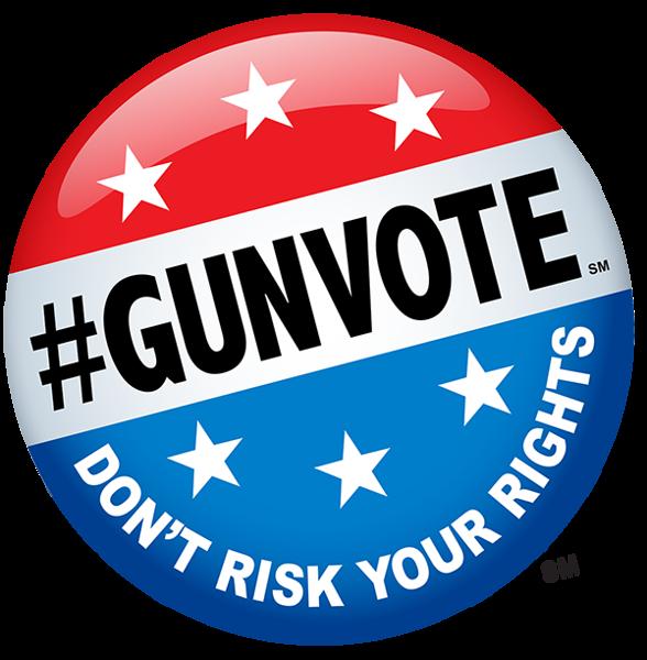 gunvote2
