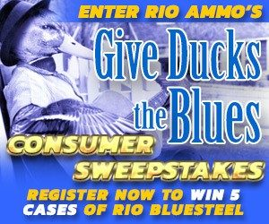 Give-Ducks-the-Blues-Sweepstakes-300x250_11 1 16